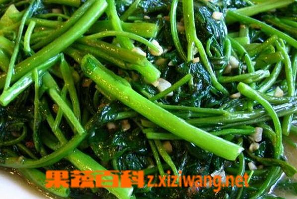 果蔬百科蒜蓉空心菜